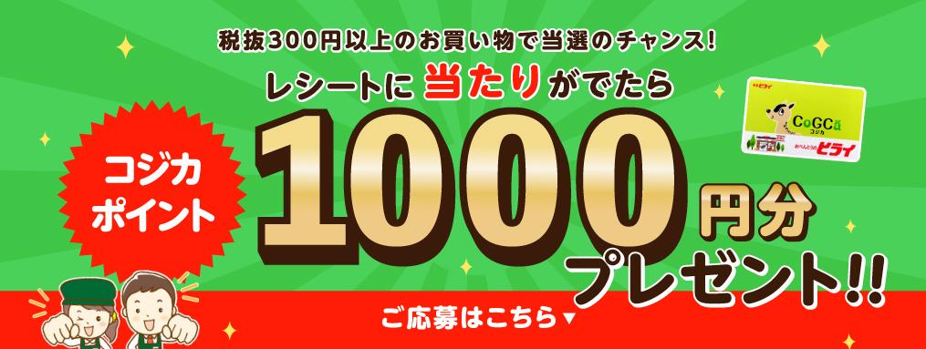 コジカポイント1000円分プレゼント