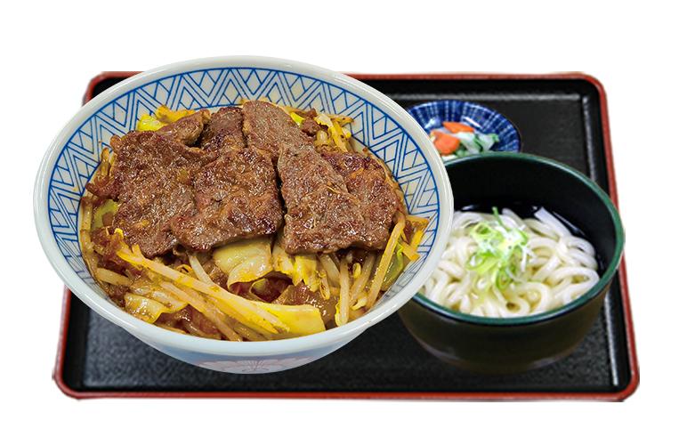 カットステーキ丼ミニうどんセット